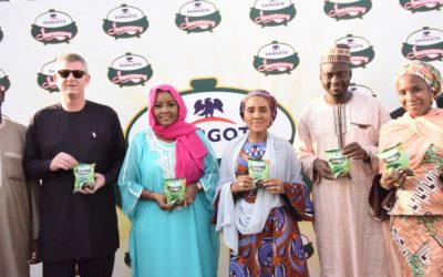 Dangote Seasoning Launch